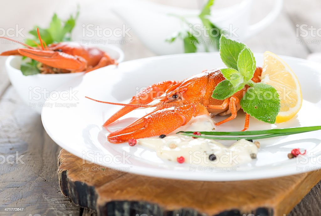 Two red lobsters royalty-free stock photo