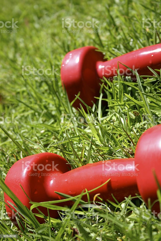 Two Red Weights royalty-free stock photo