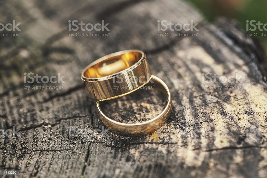 Two gold wedding rings on tree bark close-up