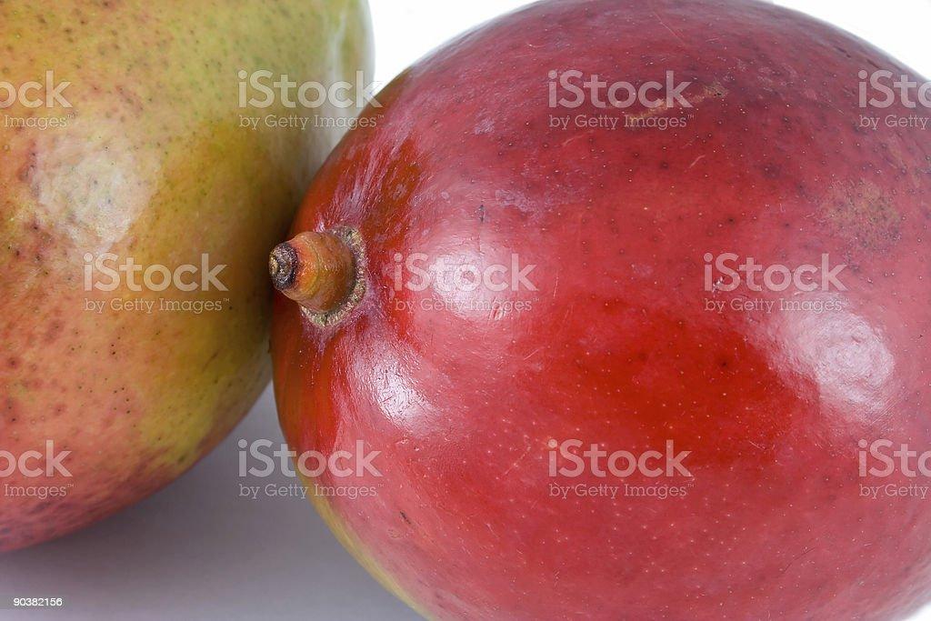 two ripe mangoes royalty-free stock photo