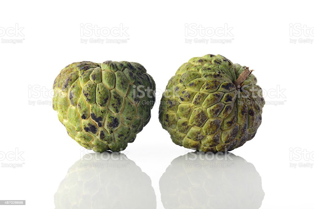 Two Ripened Custard Apples over White Background Shot In Studio. stock photo