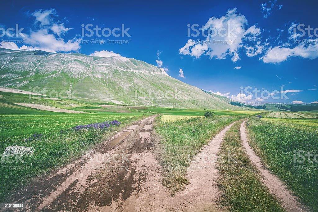 Two roads, two ways stock photo