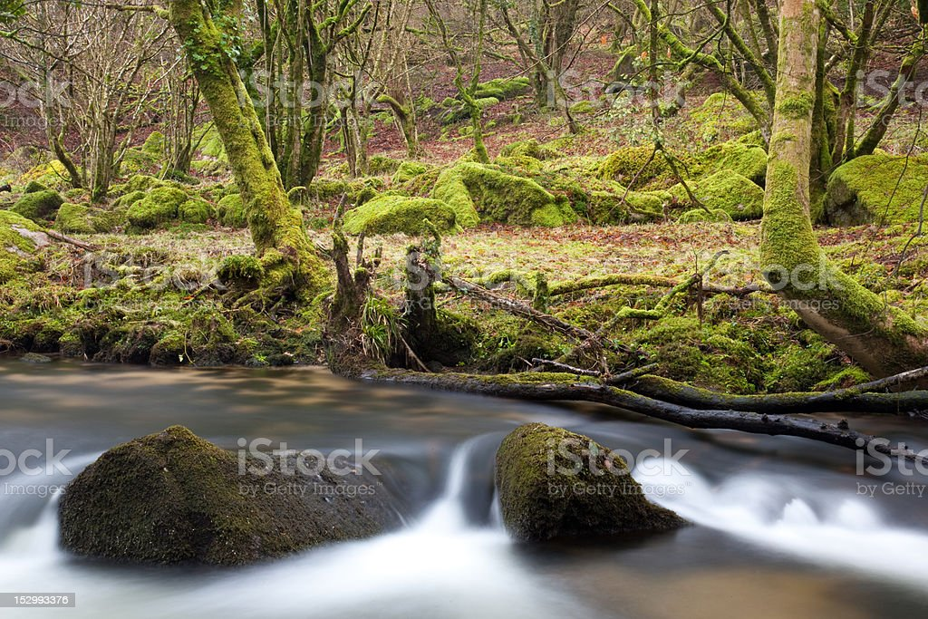 Two rocks in the River Fowey royalty-free stock photo