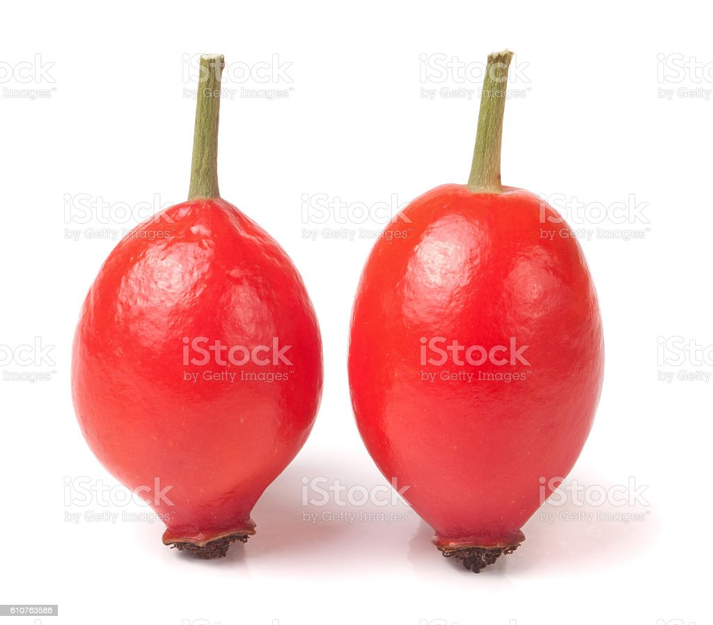 two rose hip berry isolated on white background stock photo