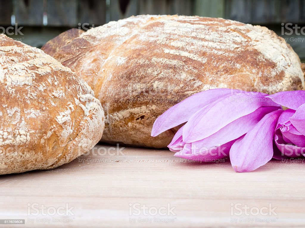 Two round french boule breads with magnolia flowers stock photo