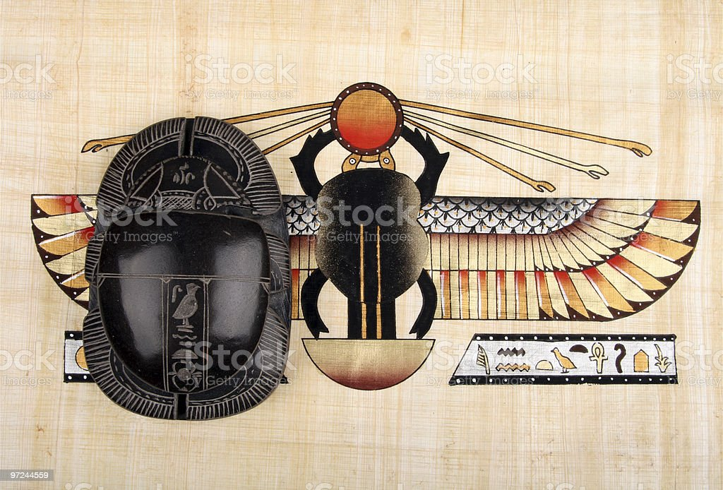Two scarab stock photo