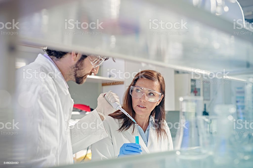 two scientist in the laboratory stock photo