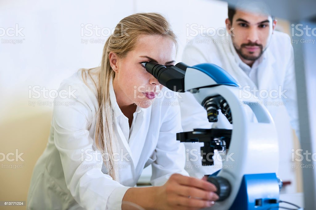 Two scientist working in laboratory stock photo