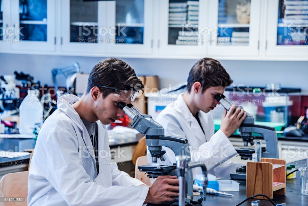 Two scientists in laboratory using a microscope for scientific research stock photo