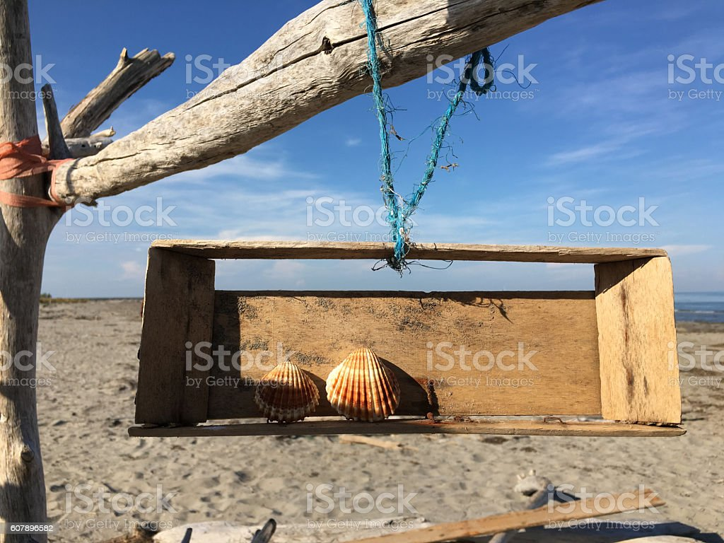 Two sea shells. stock photo