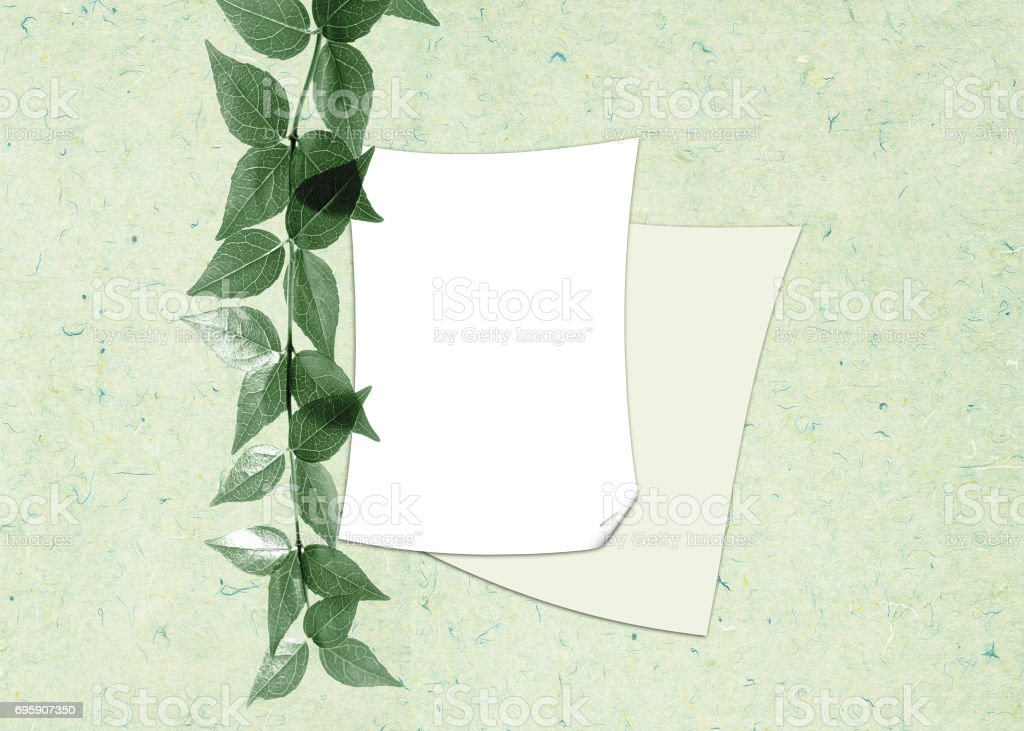 Two sheets of a paper with a branch on a gentle - green background stock photo