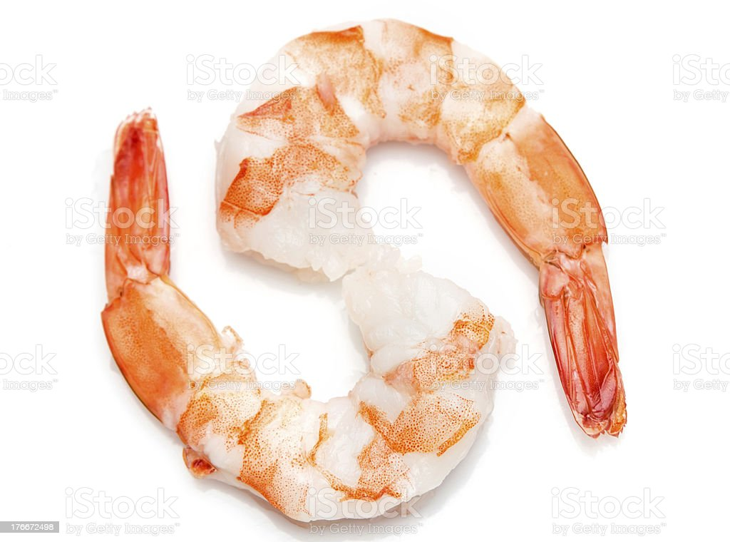 Two Shrimps royalty-free stock photo