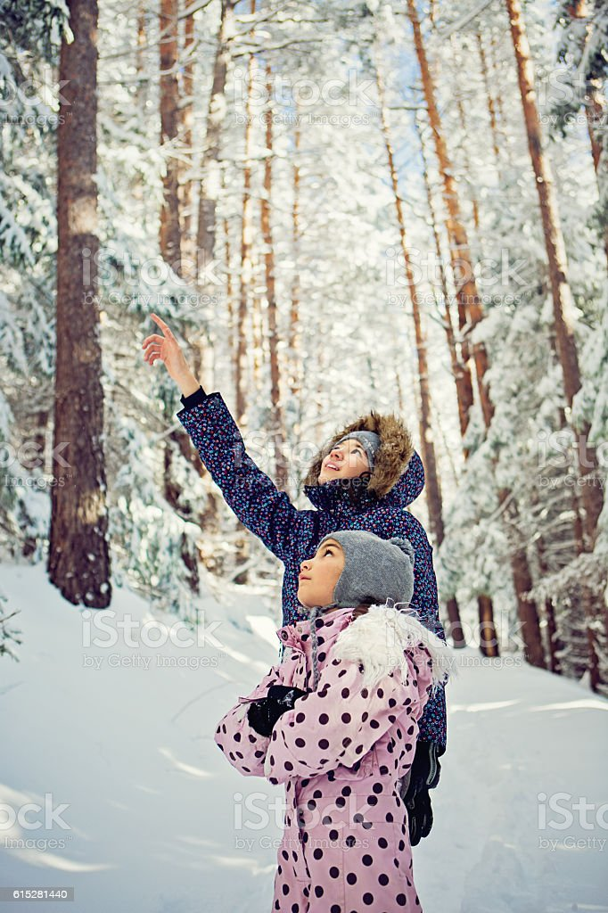 Two sisters in the snowy forest stock photo