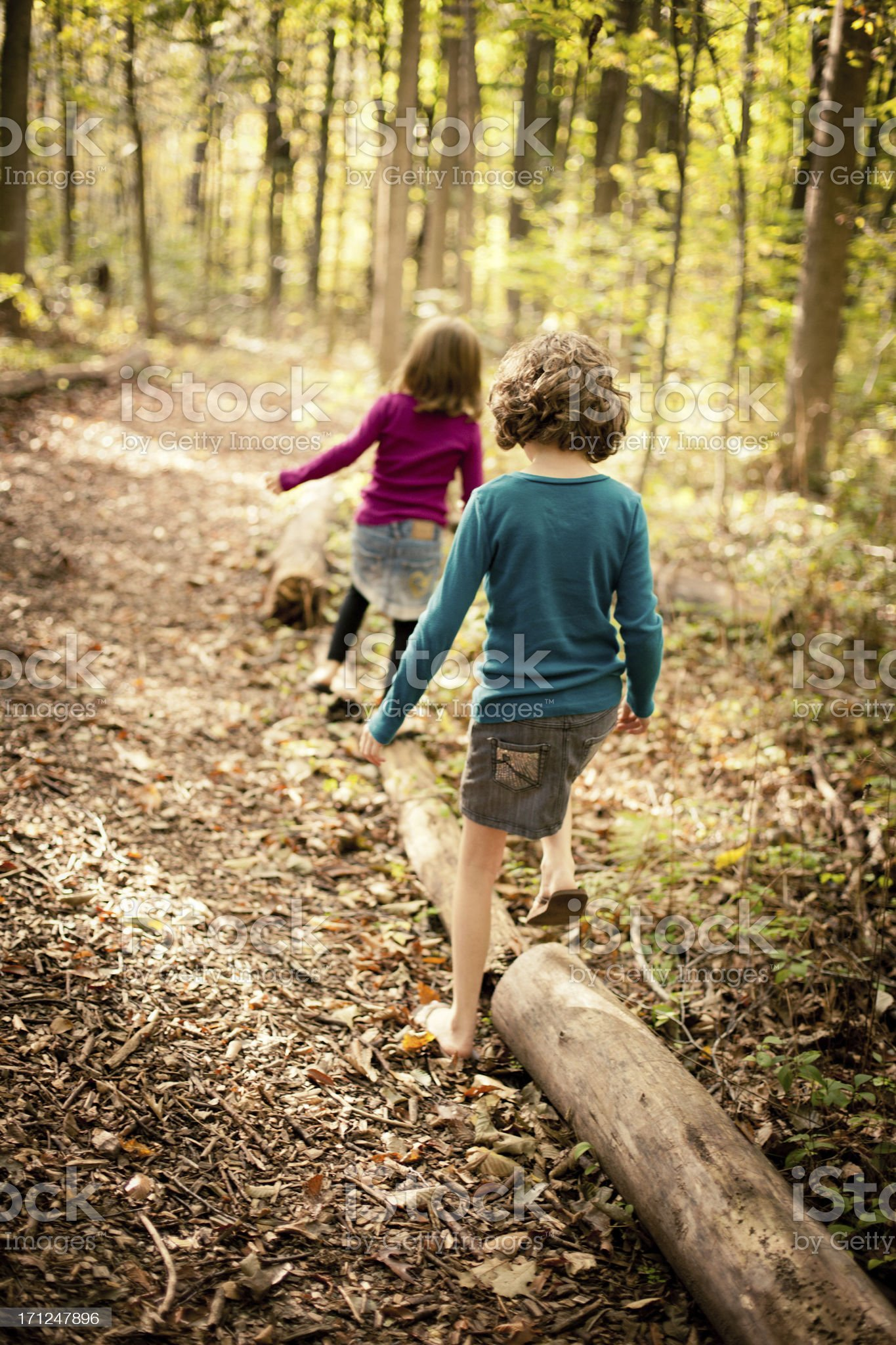 Two Sisters Walking Through Woods Together on Autumn Day royalty-free stock photo