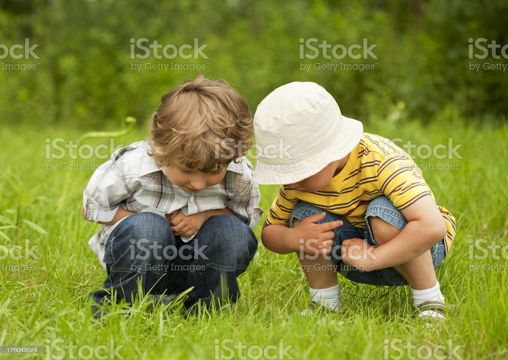 two small boys royalty-free stock photo