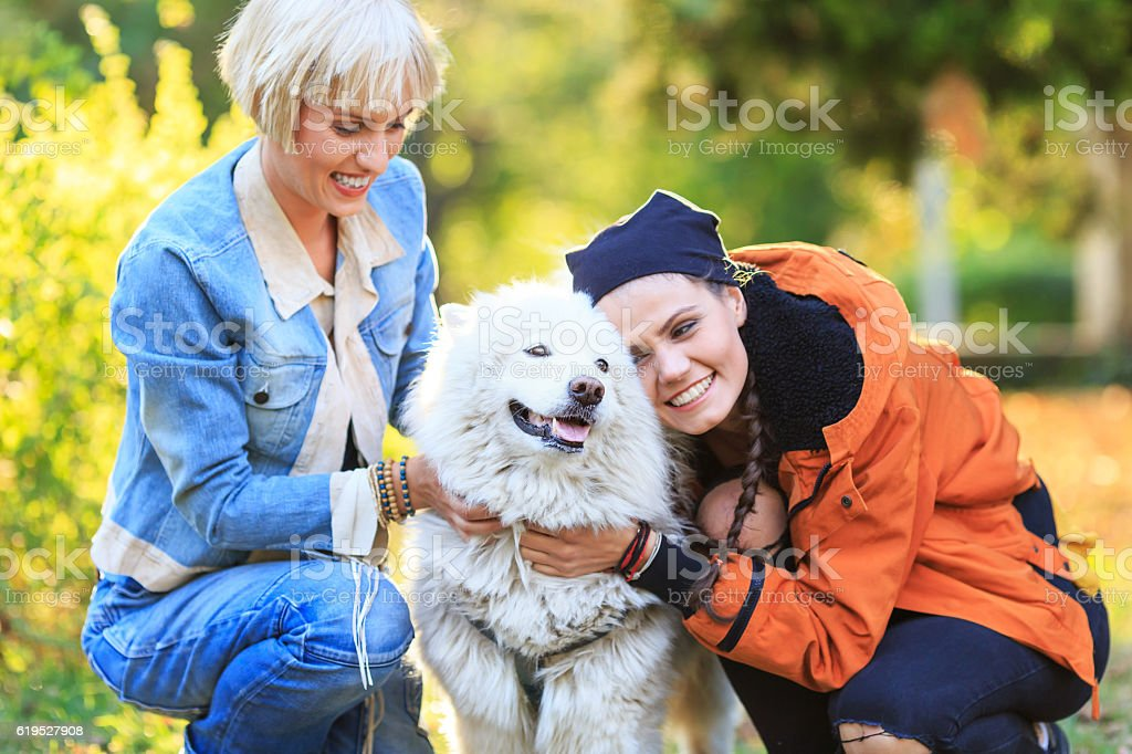 Two smiling young women caressing a samoyed dog stock photo