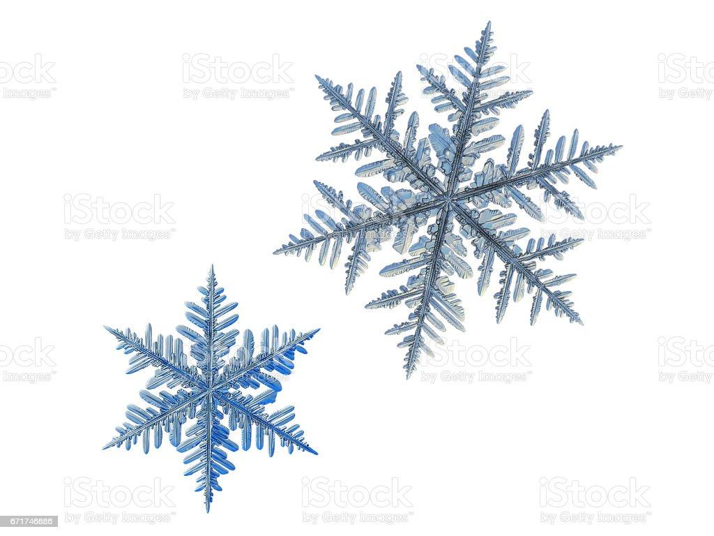Two snowflakes isolated on white background stock photo