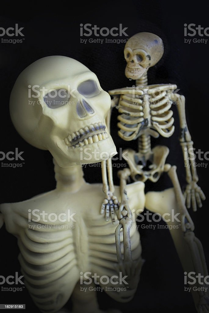 Two Spooky Halloween Skeletons Looking at Each Other stock photo