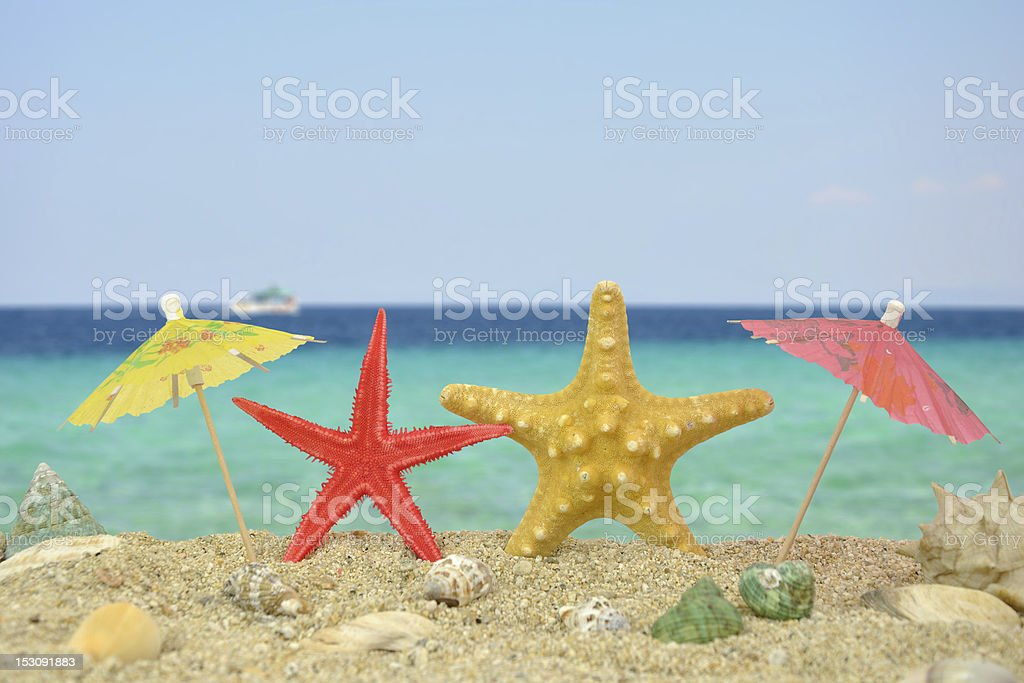 Two star fishes with paper umbrellas stock photo