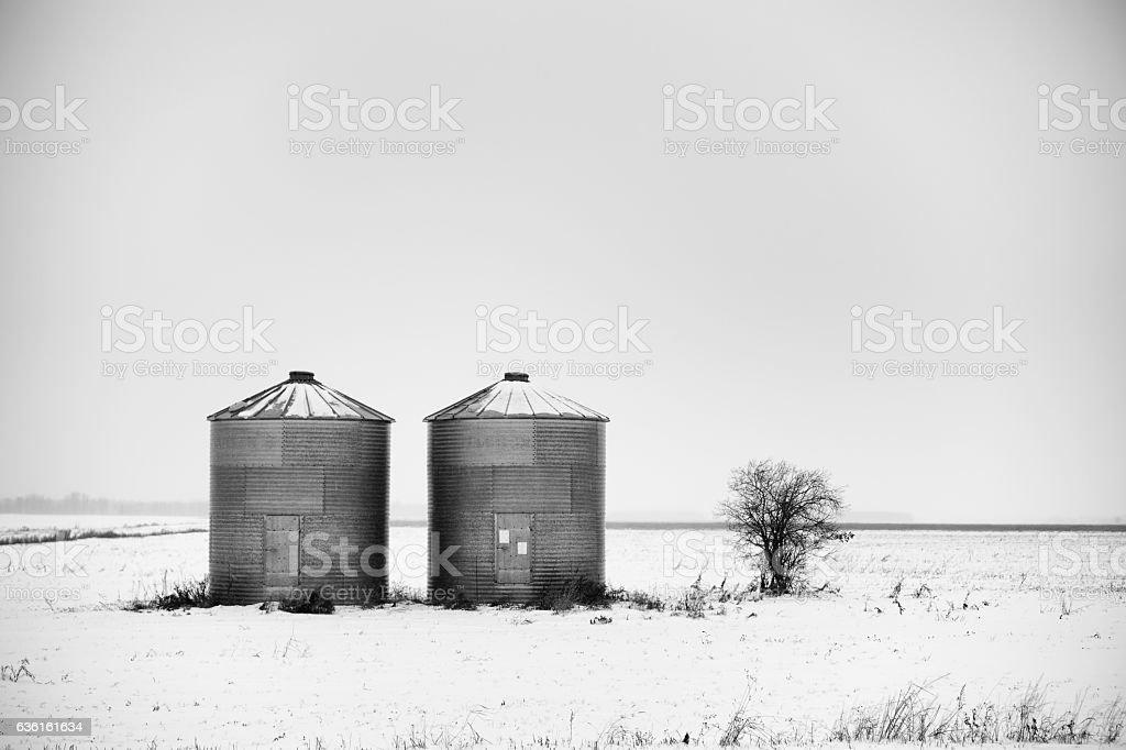 Two steel granaries stock photo