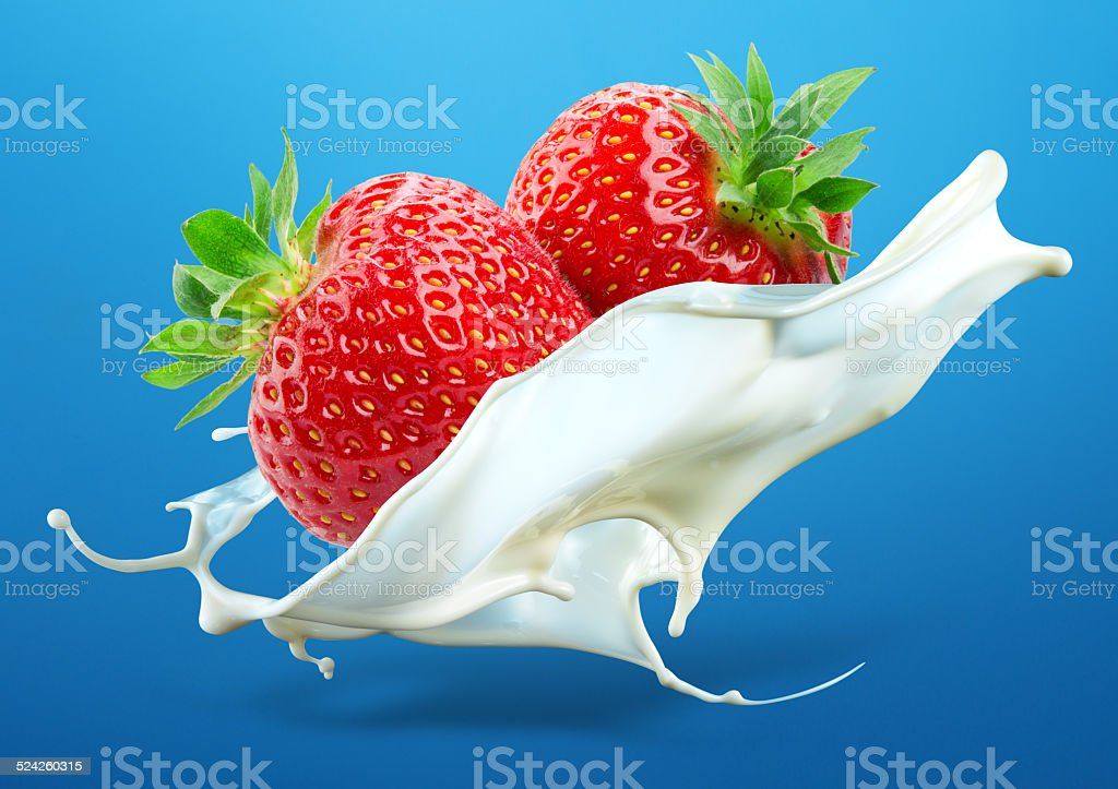 Two strawberries falling into milk splash isolated on blue background stock photo