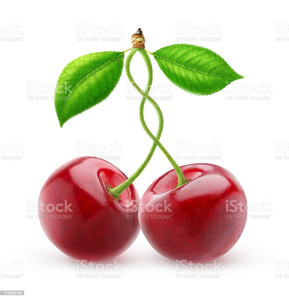 Two sweet cherries with intertwined stems isolated with clipping path stock photo