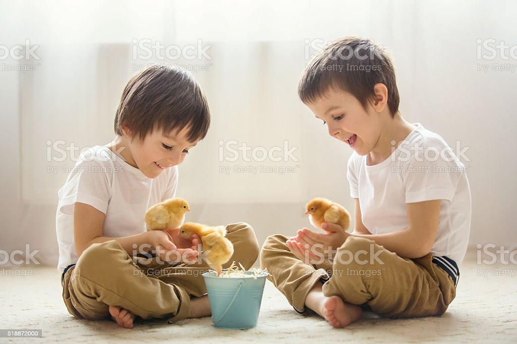 Two sweet little children, preschool boys, brothers, playing wit stock photo