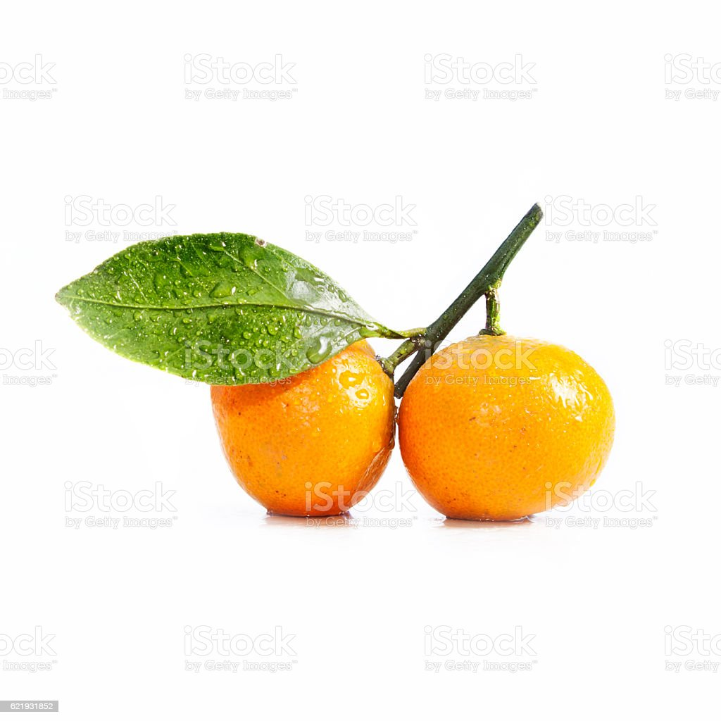 two tangerine (mandarin) with leaf on white background stock photo
