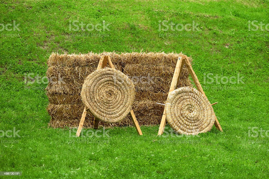 Two targets on the lawn royalty-free stock photo
