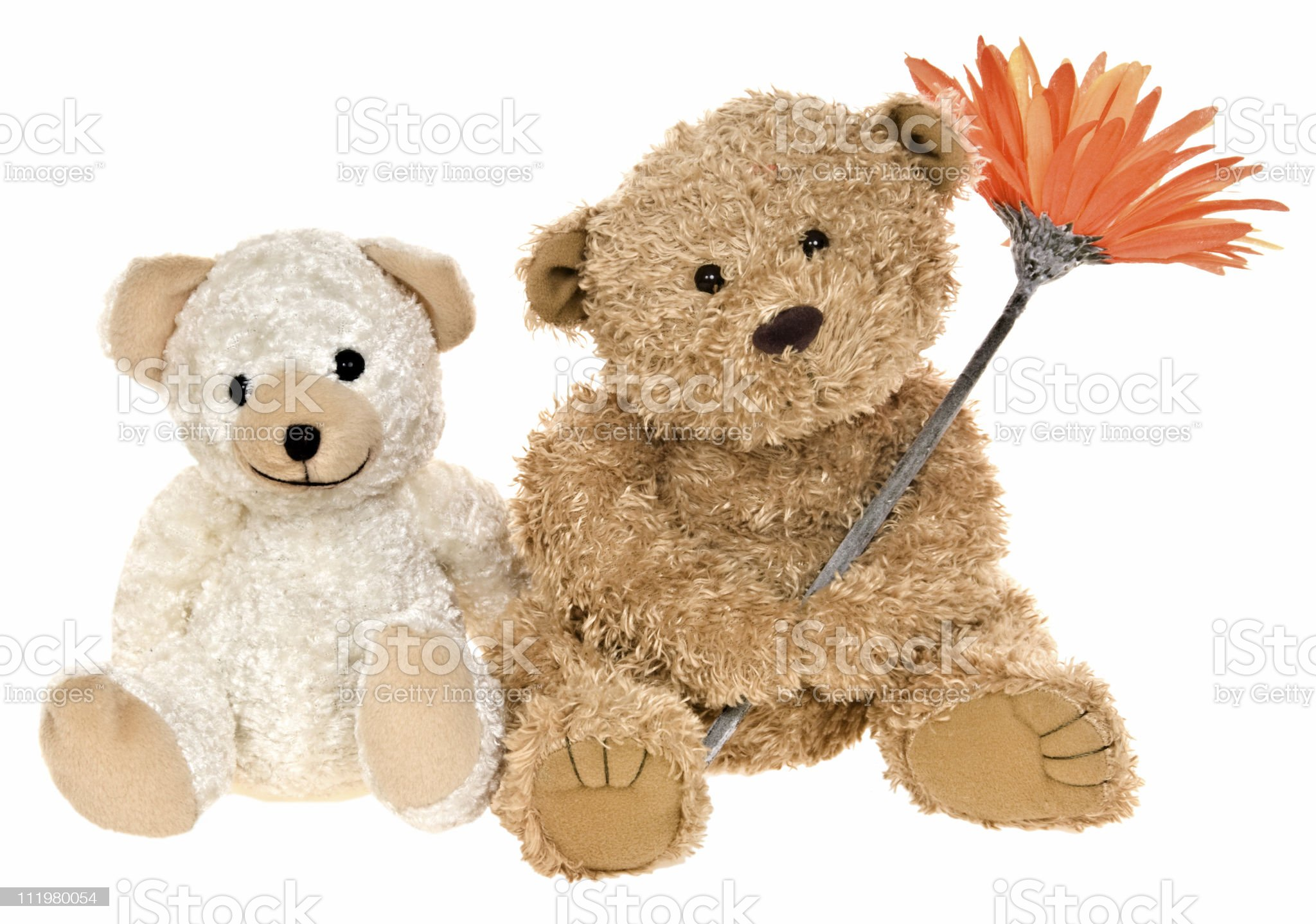Two Teddy Bears with Happy Smiling Face Holding Flower royalty-free stock photo