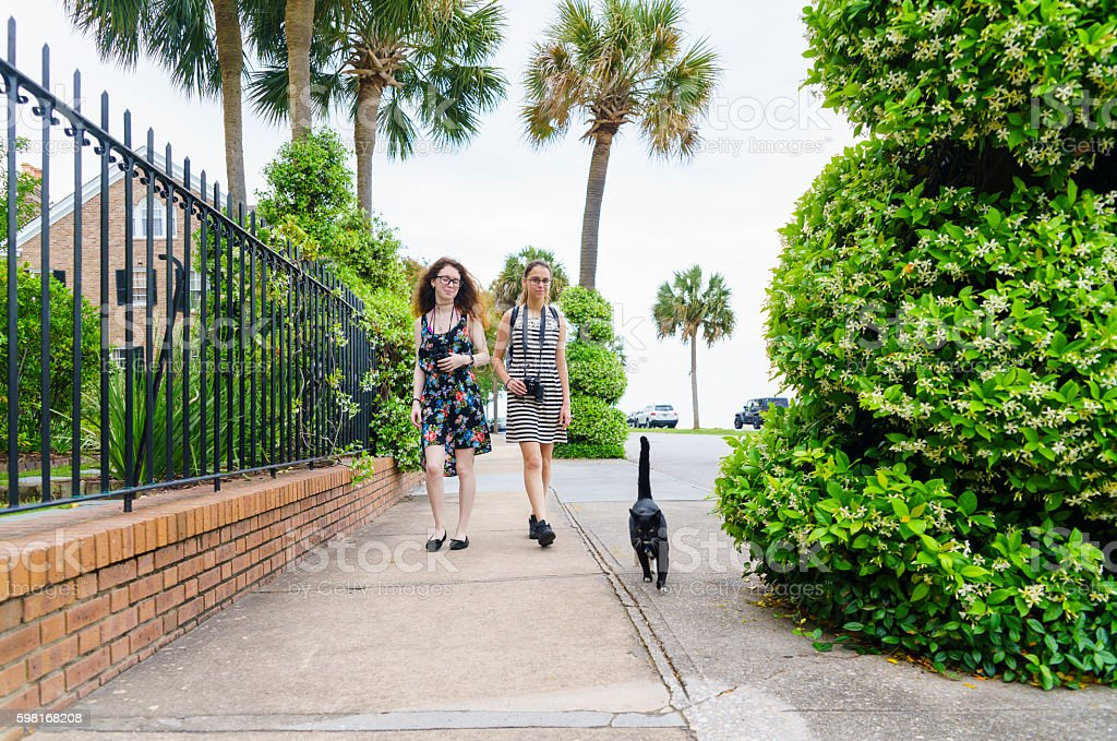 Two teenager girls and cat walks on the street stock photo