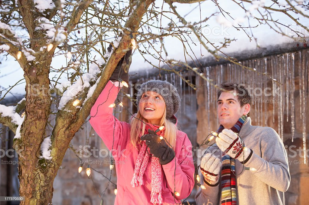 Two Teenagers Hanging Fairy Lights In Tree stock photo