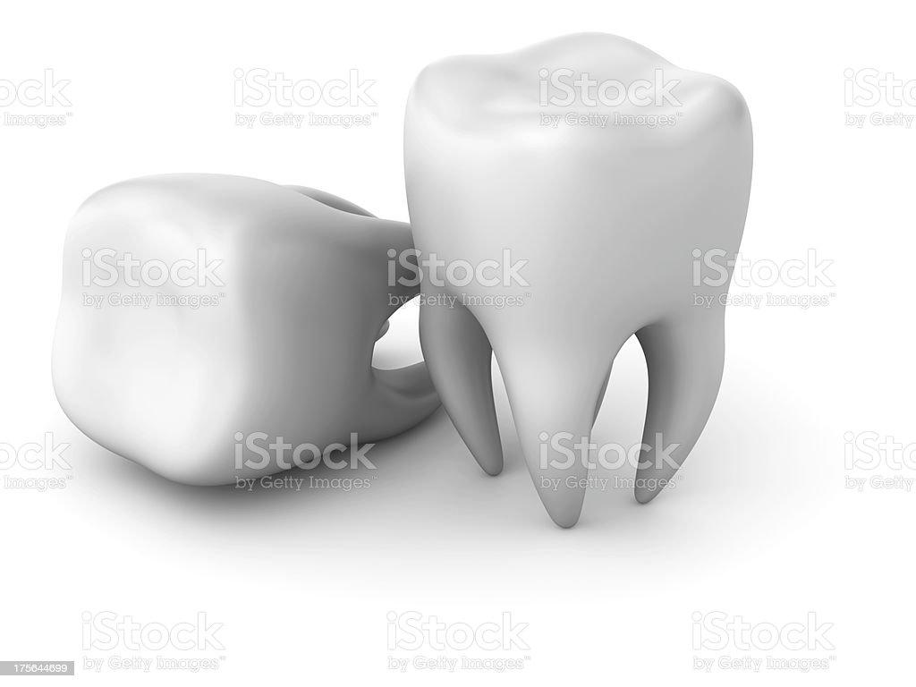 Two teeth stock photo
