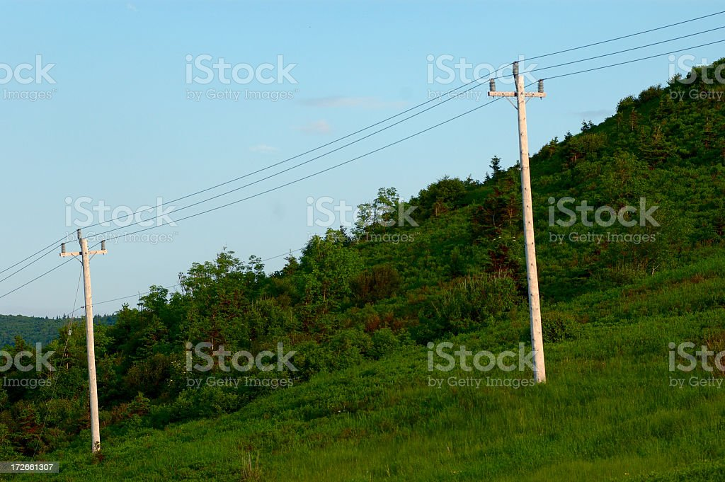 Two telephone poles royalty-free stock photo