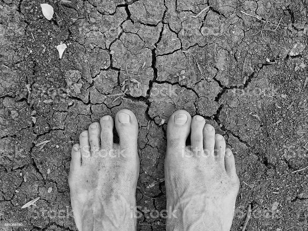 Two tired male legs on dry cracked clay. Cracked clay stock photo