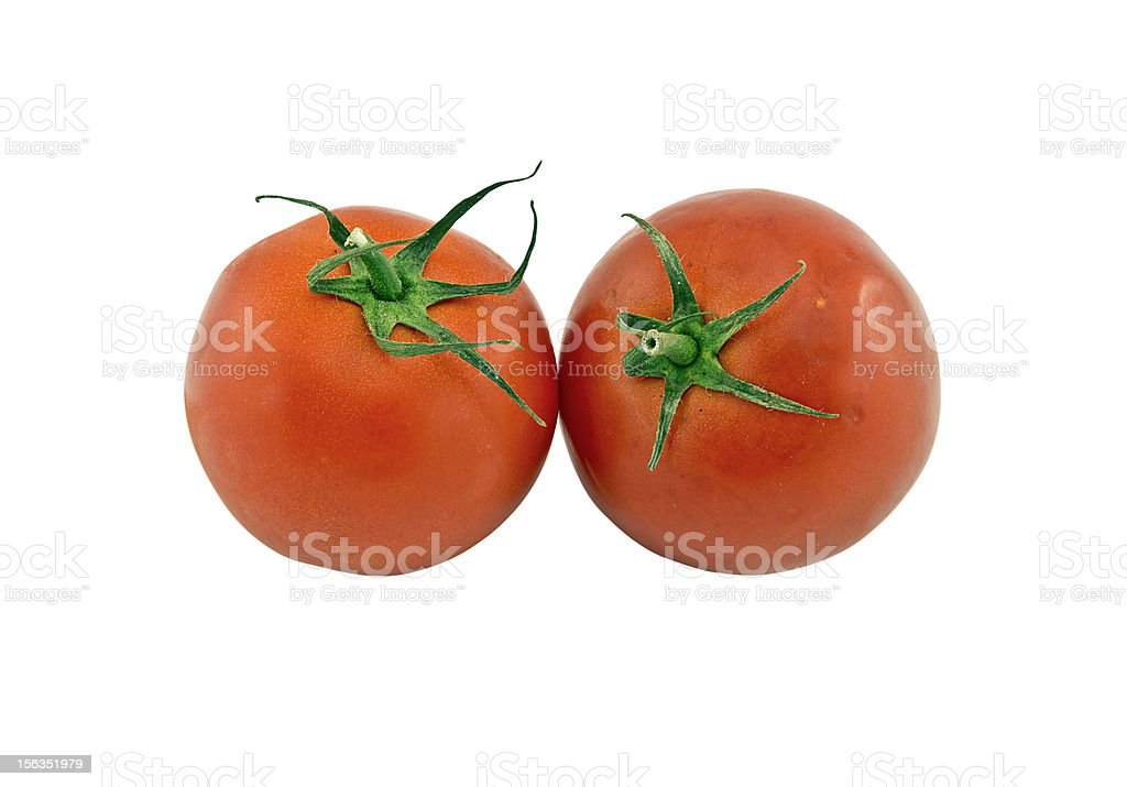 Two tomatoes royalty-free stock photo