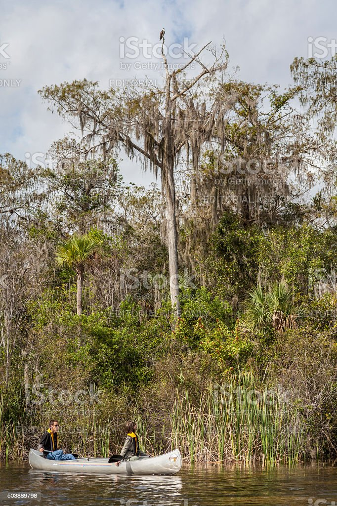 Two Tourists Stop to Watch Osprey on the Turner River stock photo
