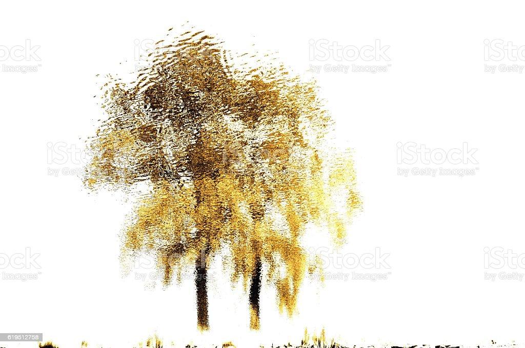 two tree stock photo