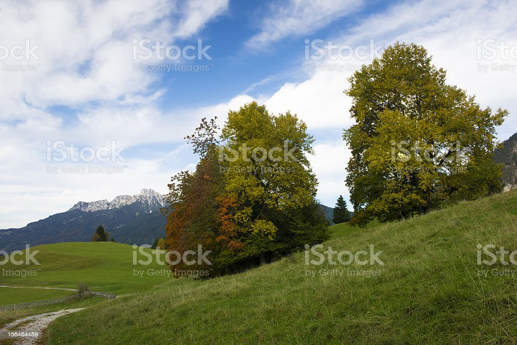 two trees at autumn on hill with meadows, mountains royalty-free stock photo