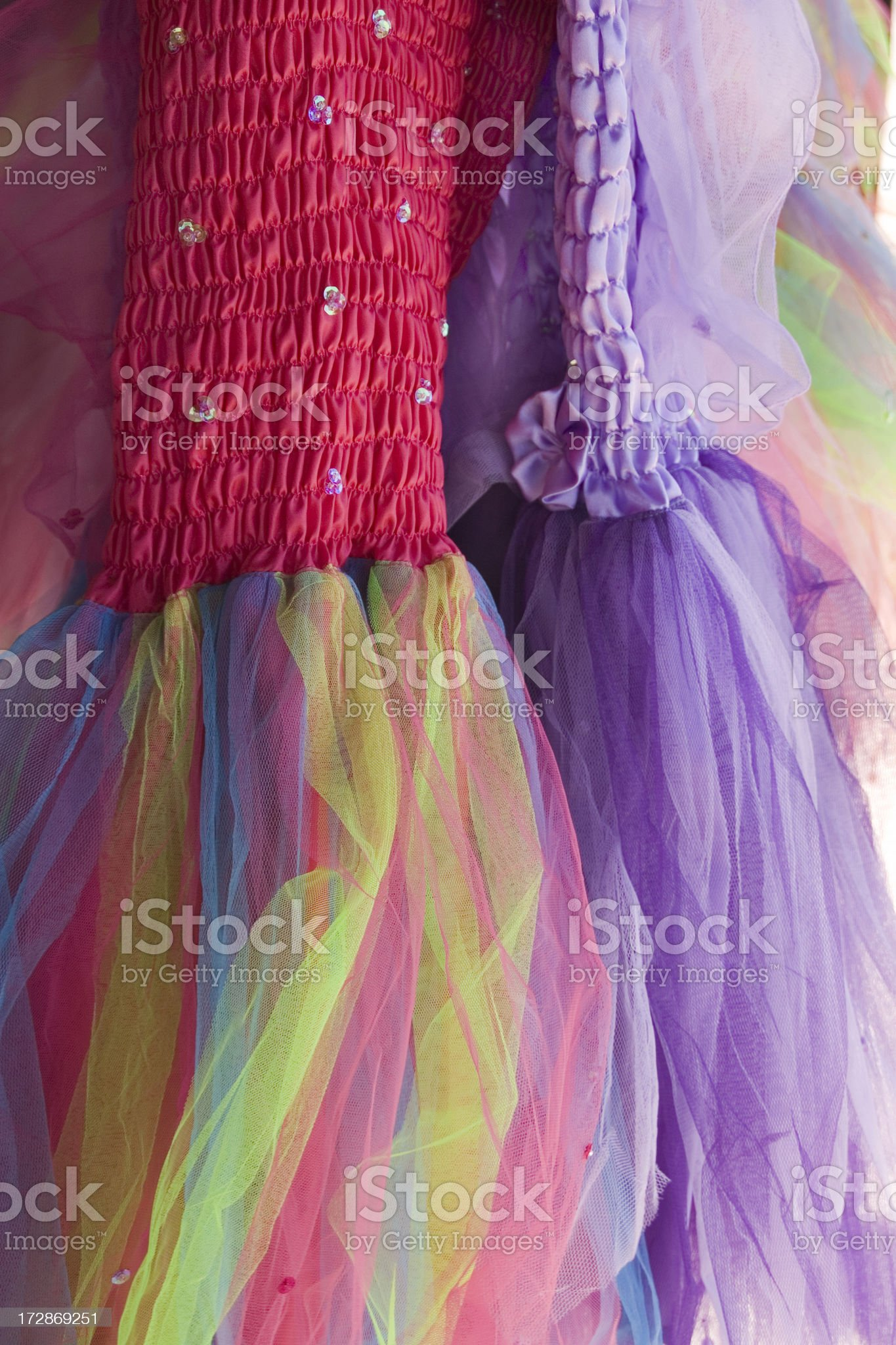 Two Tutus royalty-free stock photo