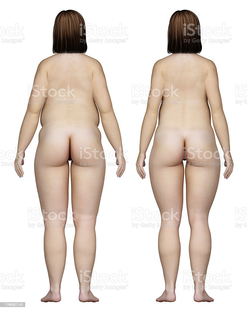 Two types of feminine bodies overweight, for study royalty-free stock photo