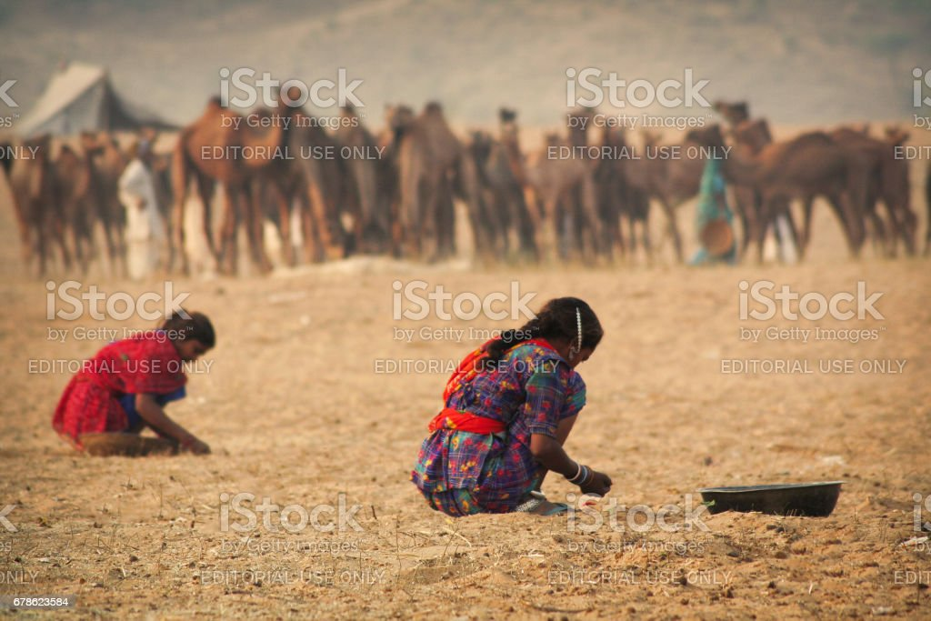 Two unidentified Rajasthani rural girls preparing the land for their group's stay at Pushkar stock photo
