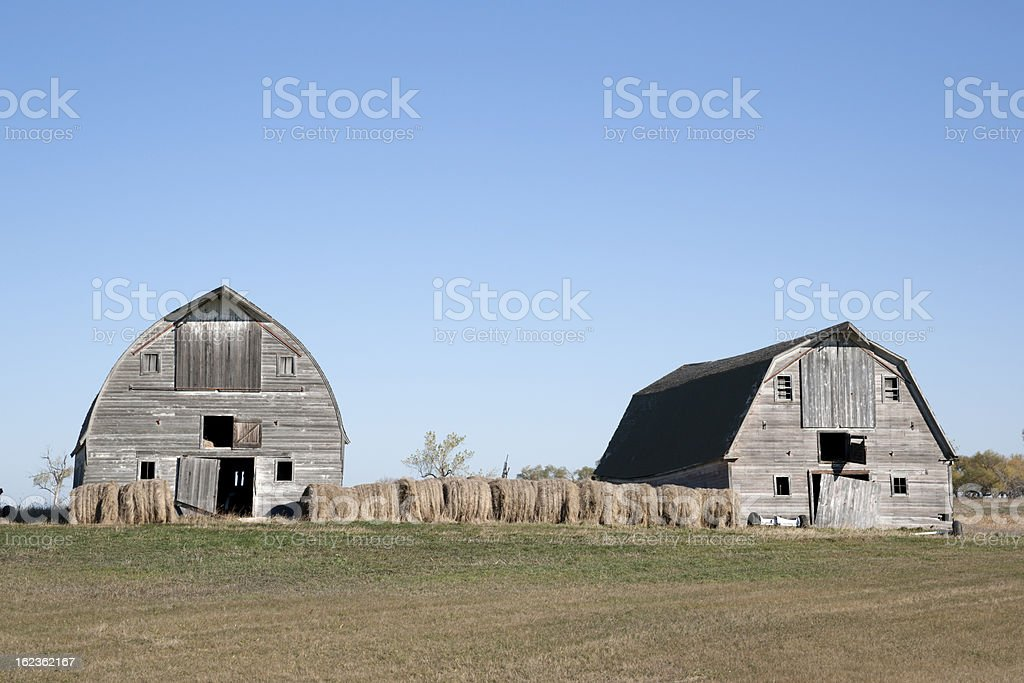 two weathered gray barns royalty-free stock photo