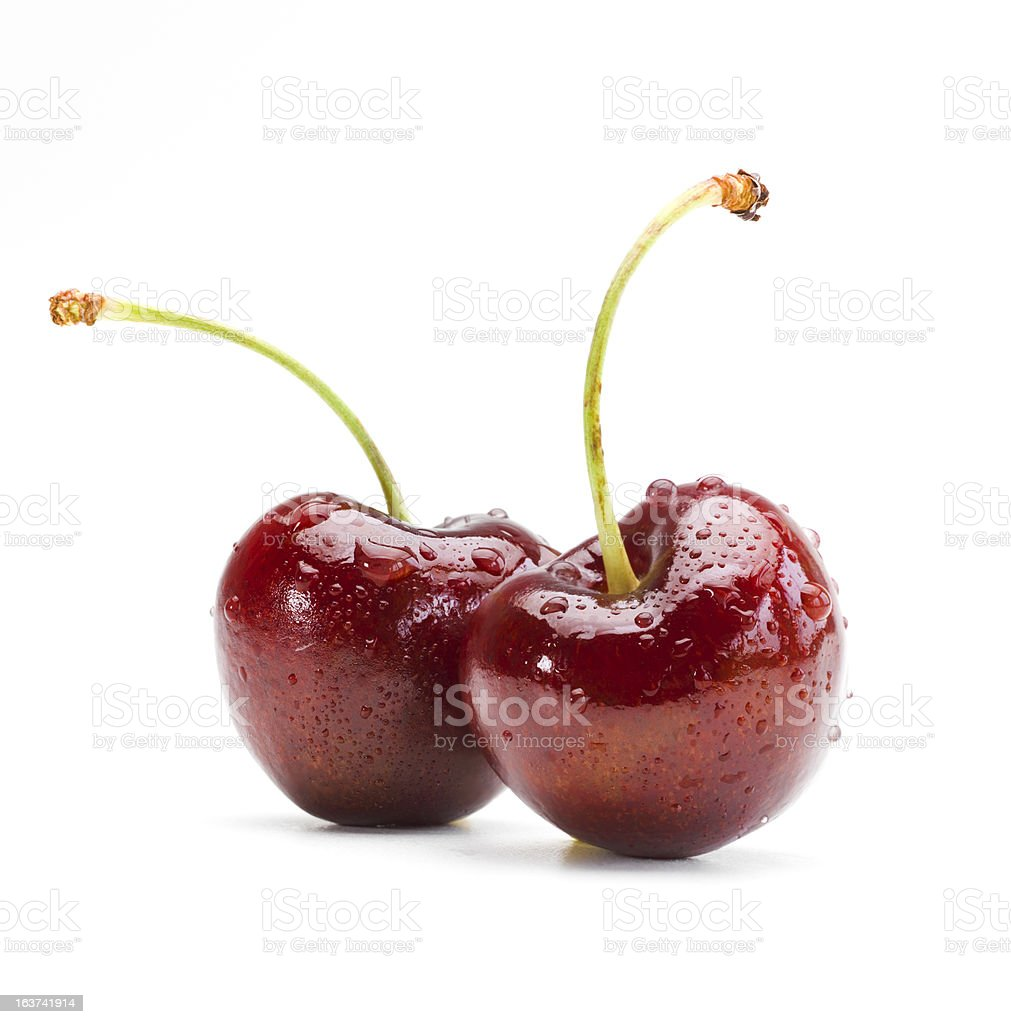 Two wet cherries on a white background stock photo