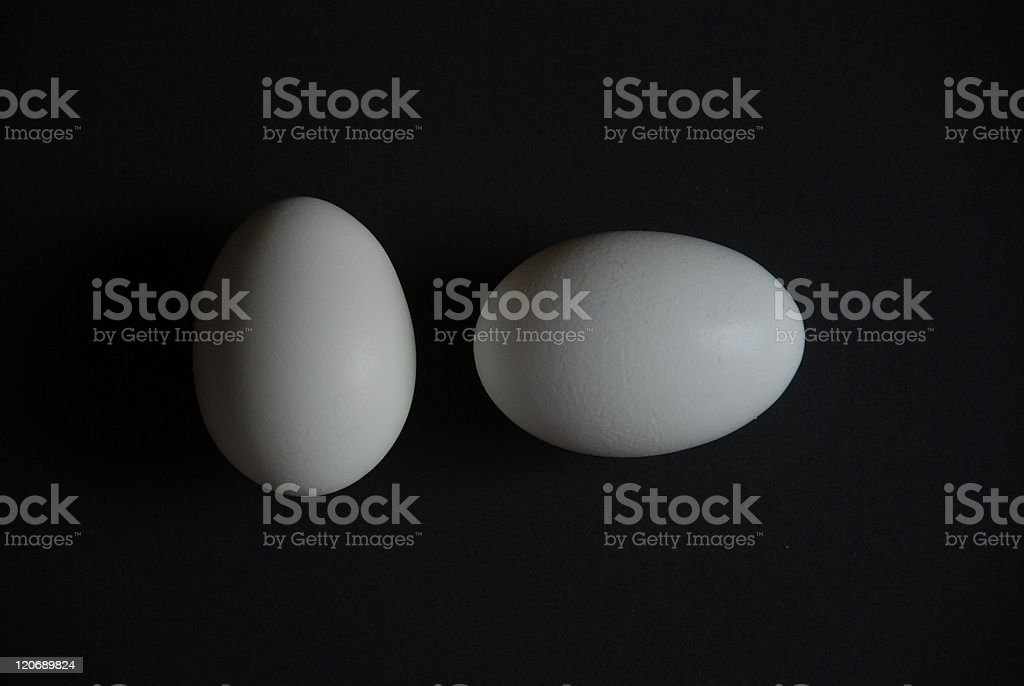 two white eggs royalty-free stock photo