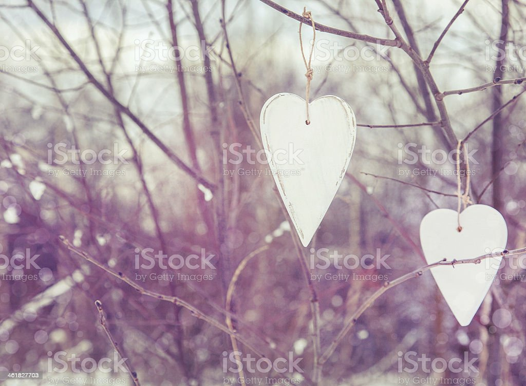 two white hearts hanging on the tree stock photo
