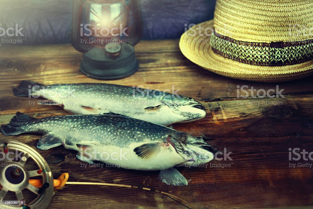 Two wild trout on a wooden pier. stock photo
