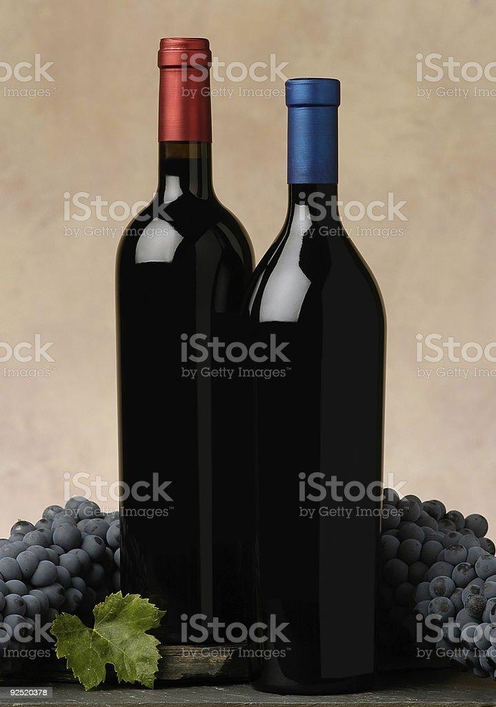 Dos botellas de vino foto de stock libre de derechos