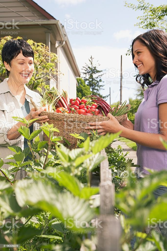 Two women carrying basket stock photo