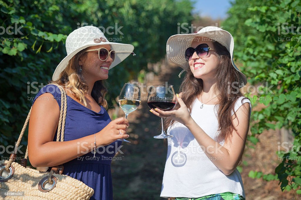 Two women toasting with wine in nature. stock photo